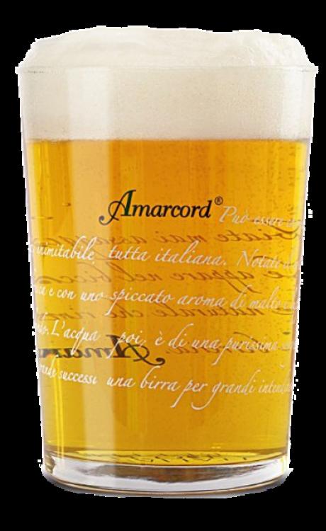 Bodega Amarcord