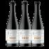 BR02 - English Barley Wine 37.5cl - Cartone da 12 bottiglie
