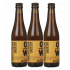 Prototypical Sour IPA 33cl