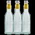 Galvanina Bio Tonica 35.5cl
