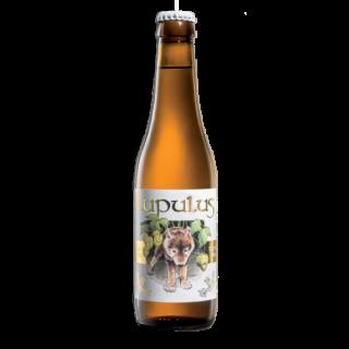 Lupulus Blonde